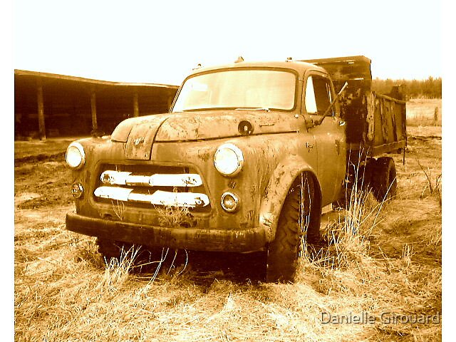 Rusted? or Rustic by Danielle Girouard