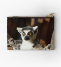 Lemur Catta Studio Pouch