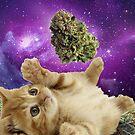 Space stoner kitten  by kushcoast