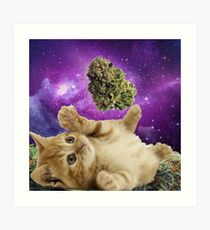 Space kitten  Art Print