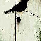 Early Bird  - JUSTART ©  by JUSTART