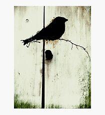 Early Bird  - JUSTART ©  Photographic Print
