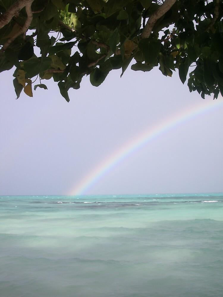 Samoan storm by Ausn