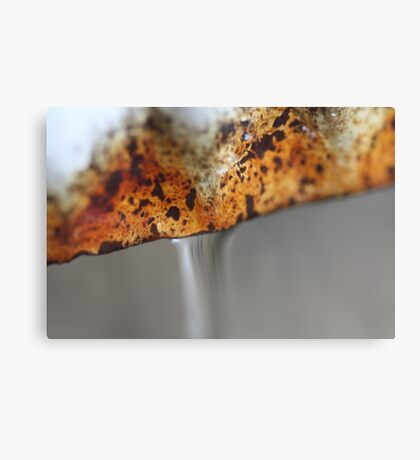 Rusted Pipes Canvas Print