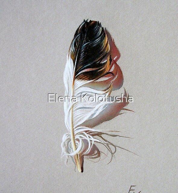 Feather & shadow #3 von Elena Kolotusha
