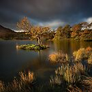 First rays of autumn light on Rydal Water by Martin Lawrence