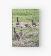 Canadian Geese Hardcover Journal