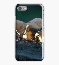 Fungi by night iPhone Case/Skin