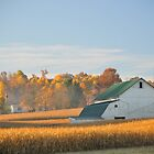 Ready to Harvest, Holmes County. by Billlee