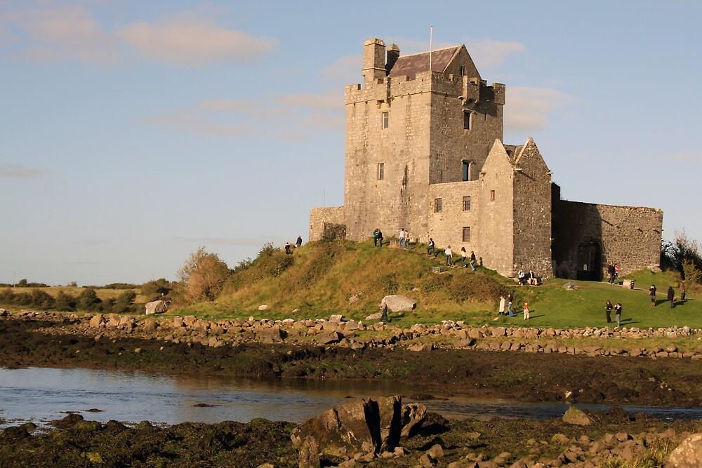 Dunguaire castle close up by John Quinn