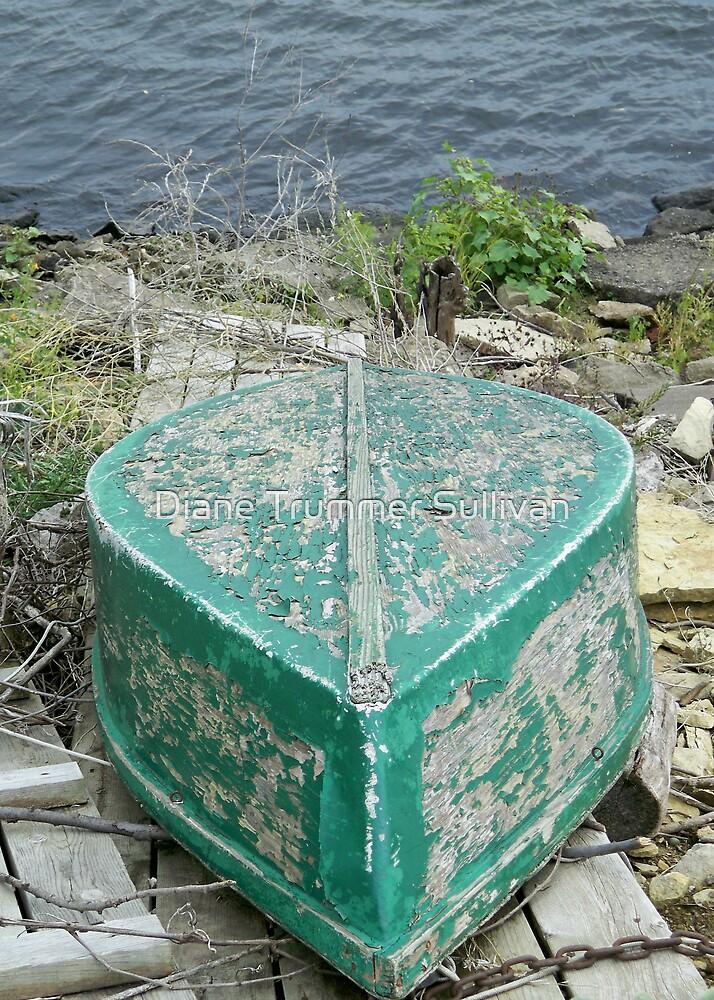 Primative Old Green Boat by Diane Trummer Sullivan