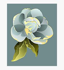 Magnolia Blossom with Leaves Graphic Photographic Print