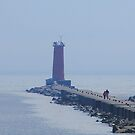 Hazy Day - Let The Fog Roll In by KatsEye