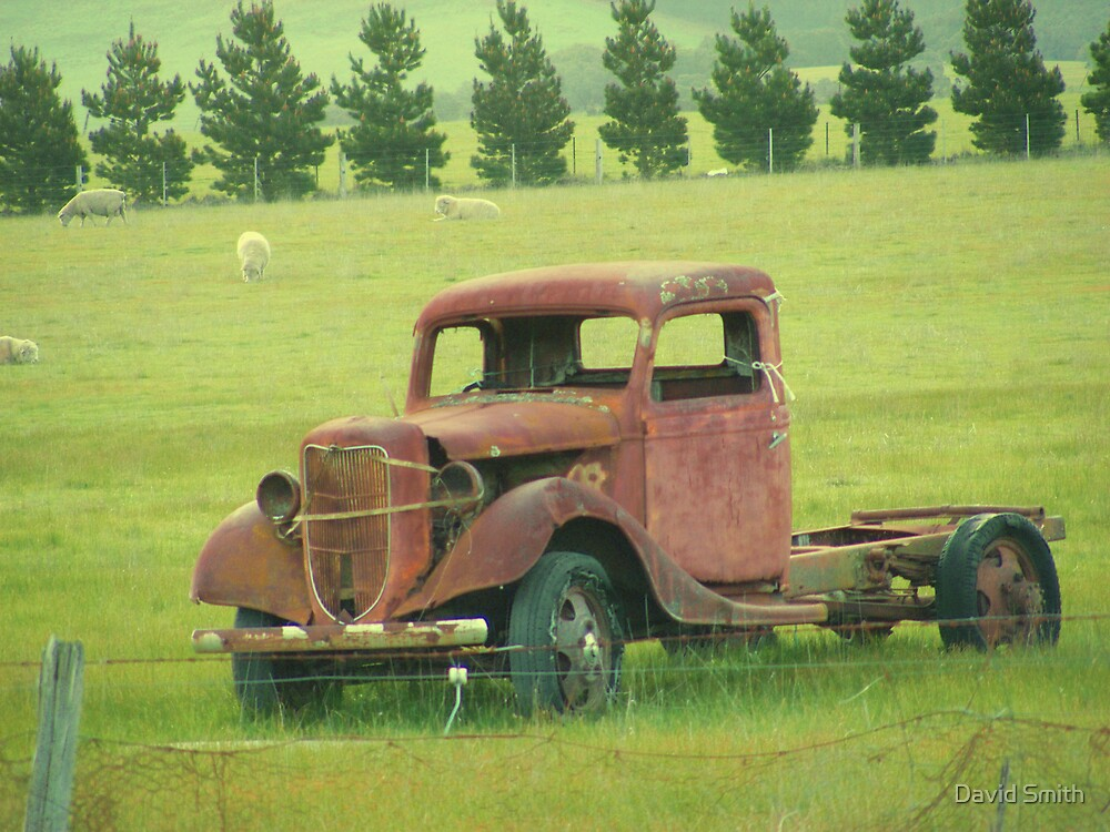 Put out to pasture by David Smith