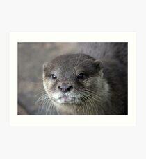 I Otter ... Art Print