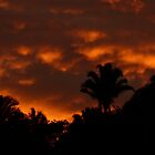 sunrise - amanecer by Bernhard Matejka
