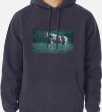 Where Dreams and Shadows Lie Pullover Hoodie