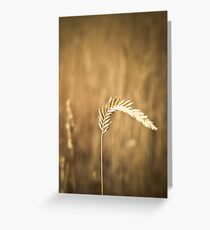 Simple Life Greeting Card
