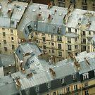 Paris France From Montparnasse Tower by Deirdreb