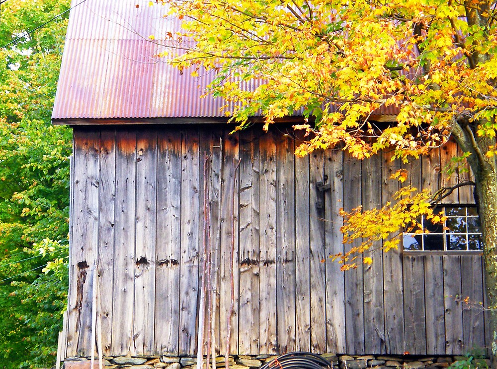 The Barn by marchello