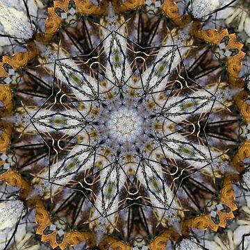 Seaweeds 2 by mitknirf