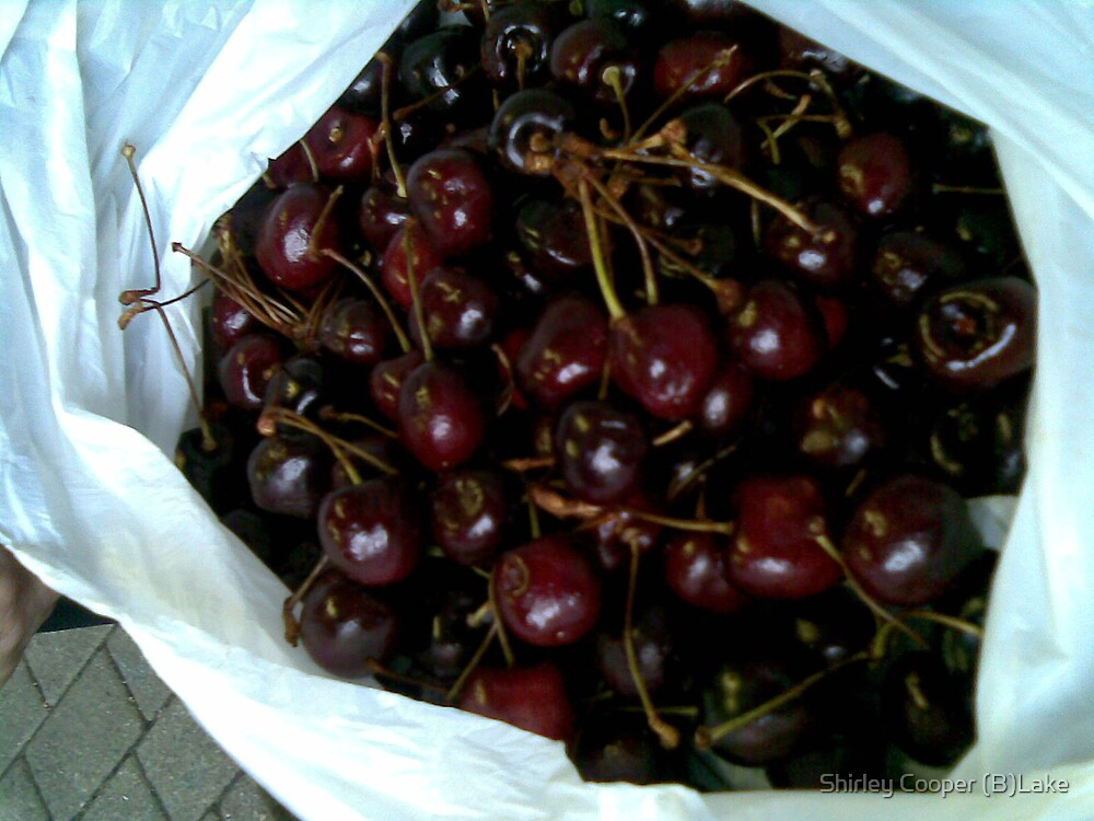 Cherries in a bag by Shirley Cooper (B)Lake