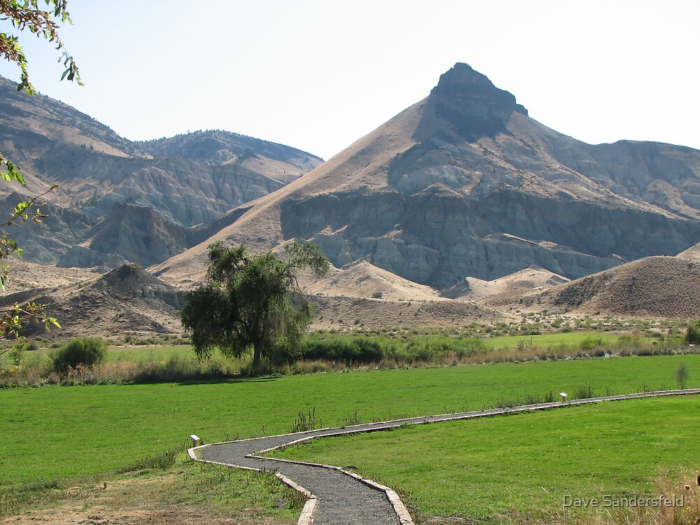 Sheep Rock of John Day Fossil Beds National Mounument by Dave Sandersfeld
