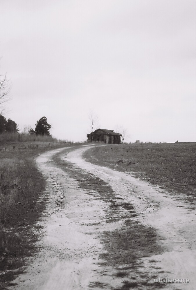 dirt road by whatseesme