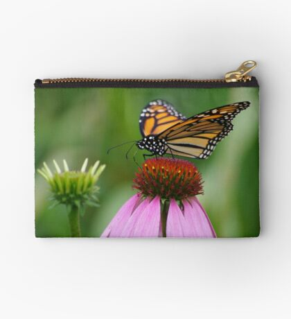softly landing on an echinacea flower Studio Pouch