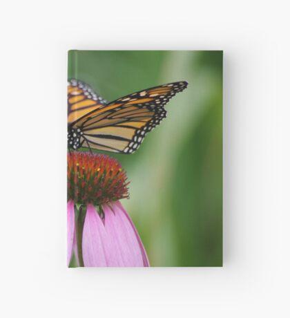softly landing on an echinacea flower Hardcover Journal