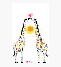 Triangles and Circles (giraffes) Photographic Print
