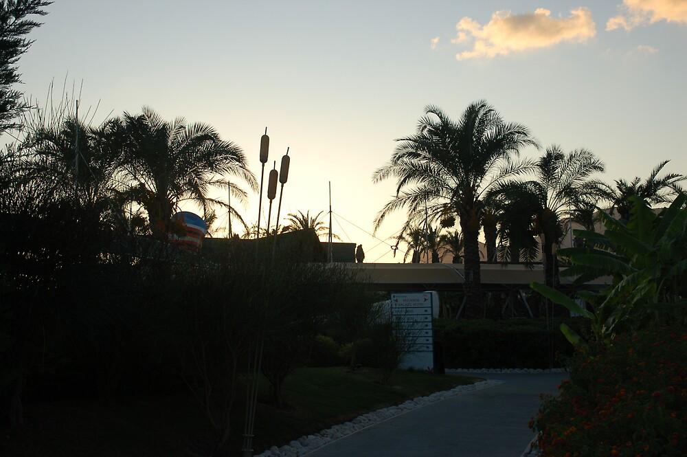 Sun Setting by kennydavisbros