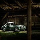 Jaguar XK 120 in the shed by Frank Kletschkus