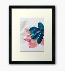 Blue Pink Plant Leaf Framed Print