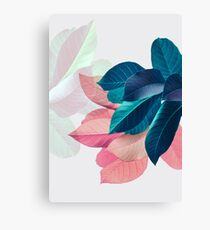 Blue Pink Plant Leaf Canvas Print