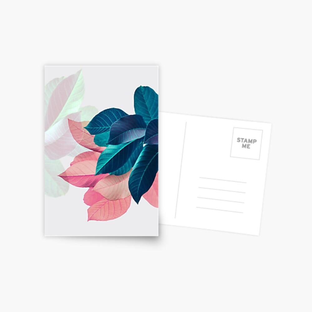 Hoja de la planta azul rosa Postal