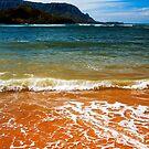 Puu Poa Beach by Caleb Ward