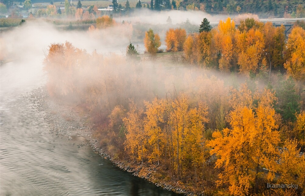 Fog in the Fall by lkamansky