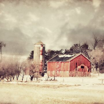 Sioux City Barn & Silo by BarnArtandMore