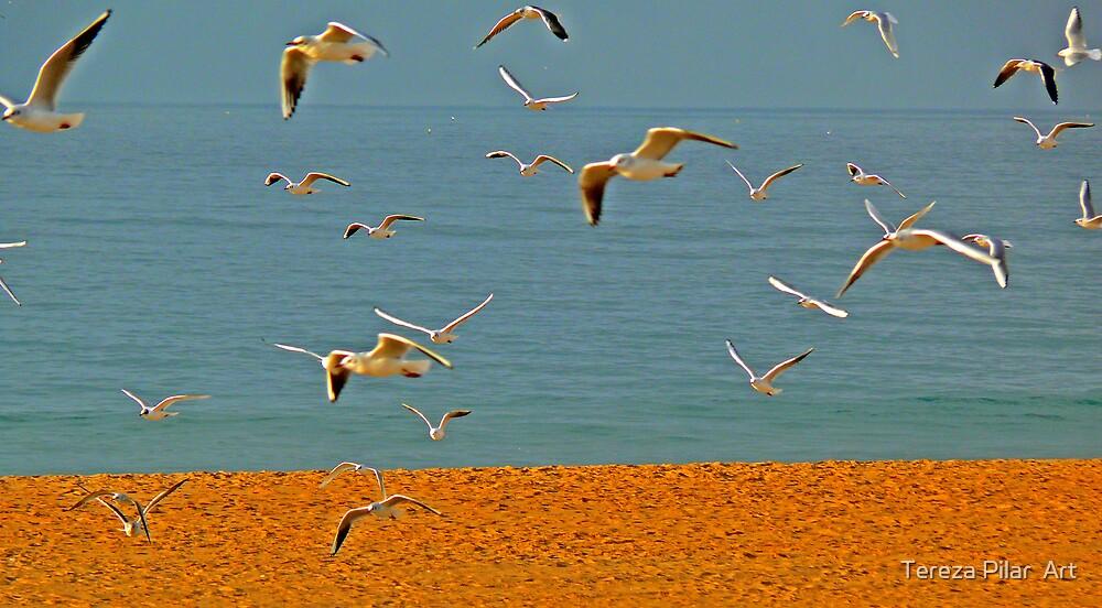 seagulls by terezadelpilar ~ art & architecture