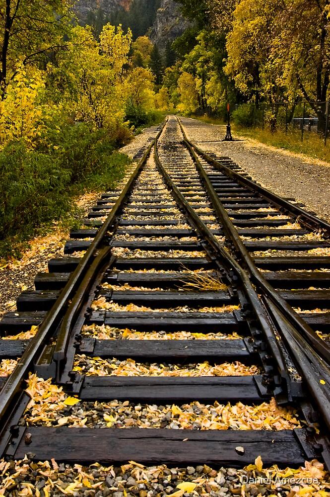 The-Road-To-Fall by Daniel Amezcua