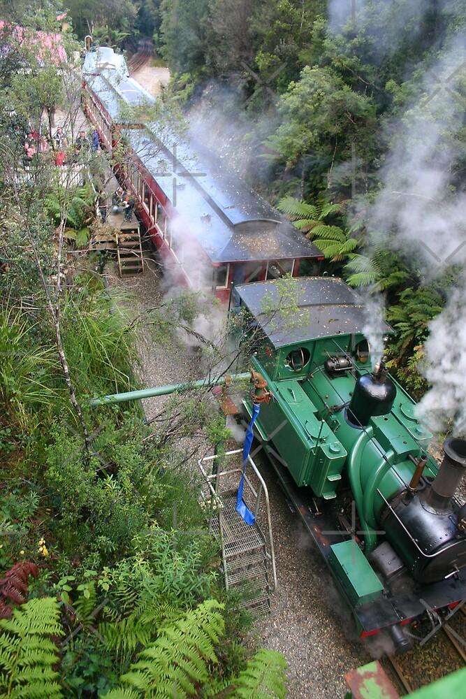 West Coast Wilderness Railway, Strahan by Caro