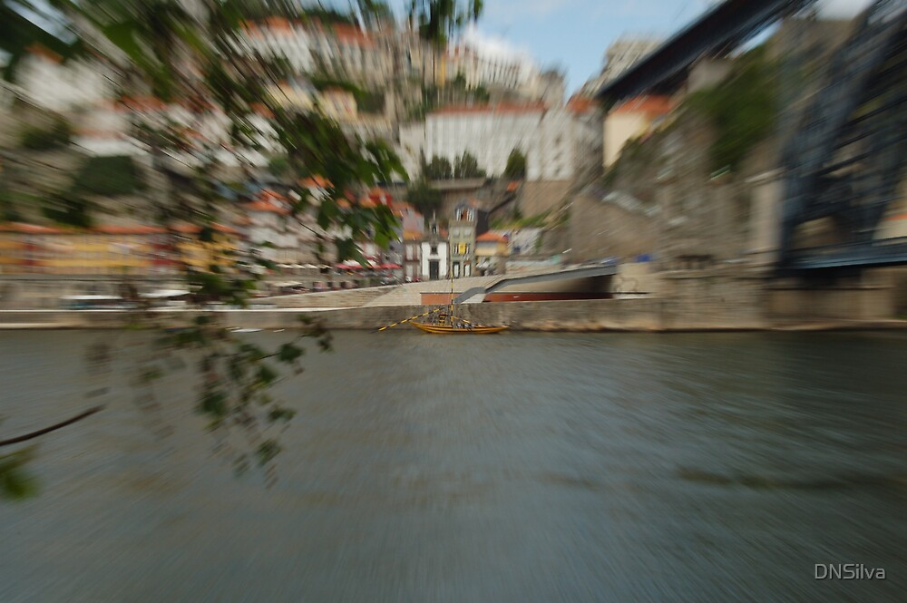 Boat in the Douro river by DNSilva