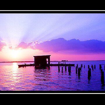 Skinner's Dock by glink