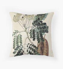 acacia vintage botanical print Throw Pillow
