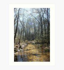 Sandy Creek Art Print
