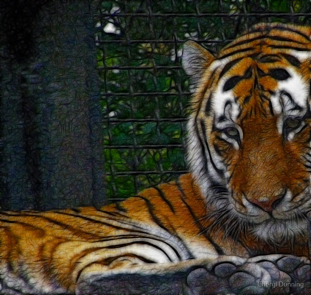 sad tiger by Cheryl Dunning