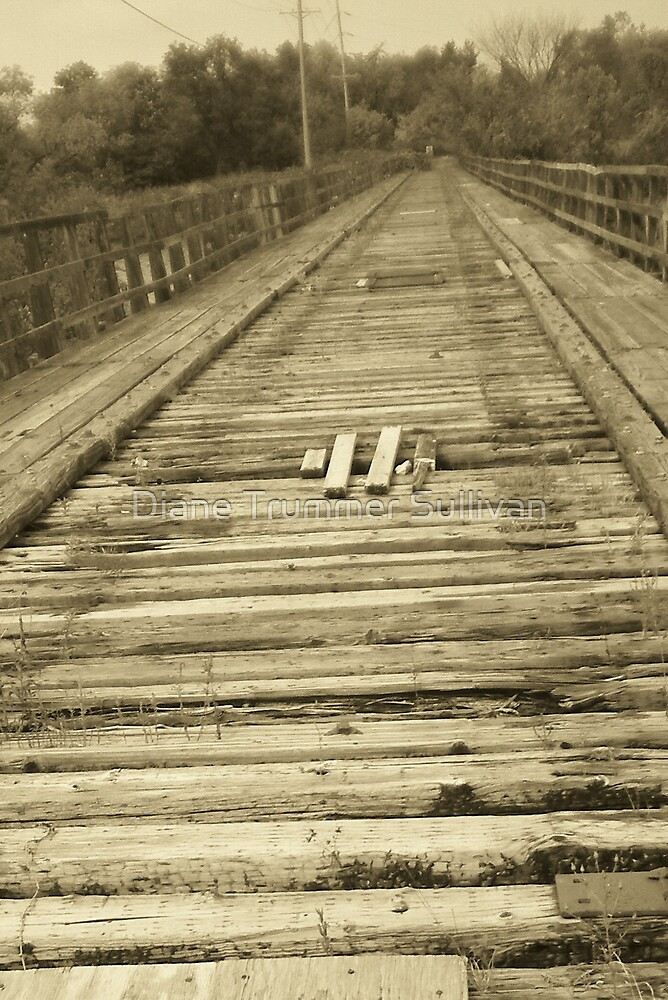 Ole Train Bridge ~  by Diane Trummer Sullivan