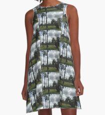 Lacy Park, San Marino A-Line Dress