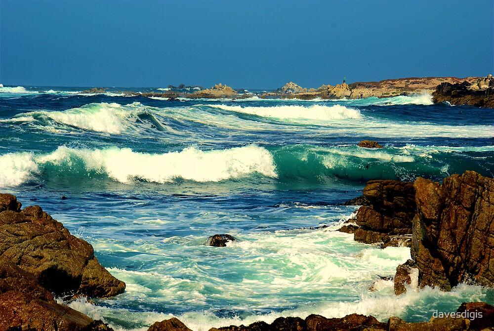 MONTEREY COASTAL WAVES by davesdigis